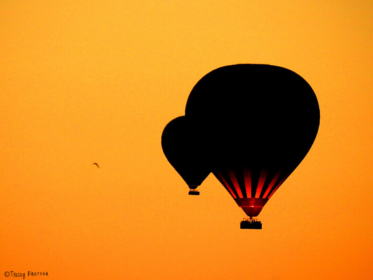 Hot Air Ballooning at sunrise over Cappadoccia, Turkey